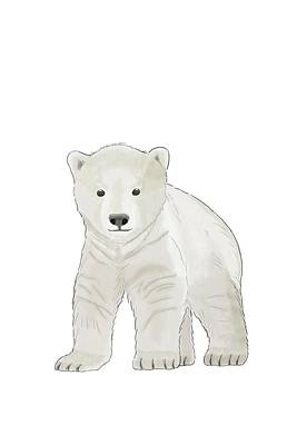 Polar Bear Cub Original