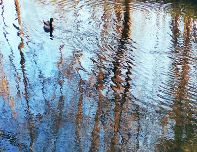 Photograph - Pond Abstract Plus Duck by Roger Bester