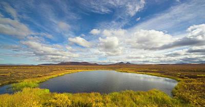 Photograph - Pond And Tundra Fall, Yukon, Canada by Eastcott Momatiuk