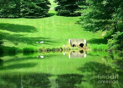 Photograph - Pond At Saint Josephs Monastery In Saint Marys Pennsylvania by Rose Santuci-Sofranko
