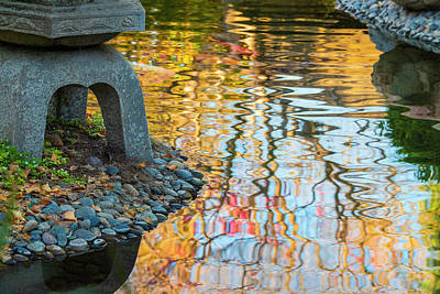 Dragons - Pond Reflections by Jonathan Hansen