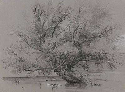 Drawing - Pond With Willow Tree And Ducks by Peter De Wint