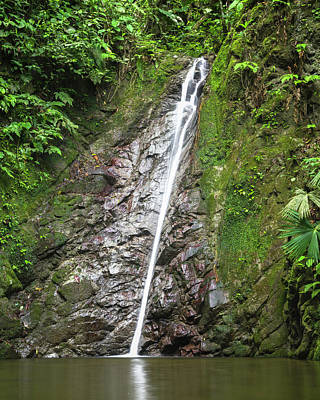 Photograph - Pool Of Dreams Entreaguas Ibague Tolima Colombia by Adam Rainoff