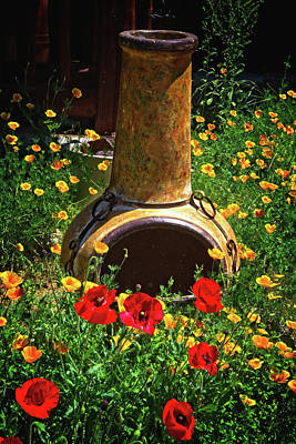 Photograph - Poppies And Pottery by Lynn Bauer
