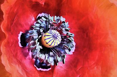 Digital Art - Poppy Flower Closeup by JC Findley