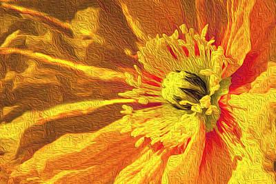 Polaroid Camera - Poppy in Marigold by Vanessa Thomas