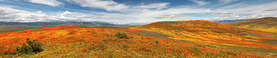 Photograph - Poppy Reserve Panorama 1 by Endre Balogh