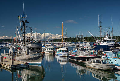 Photograph - Port Mcneill, Vancouver Island, British by Witold Skrypczak
