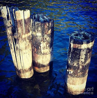 Photograph - Posts In Water by Suzanne Lorenz