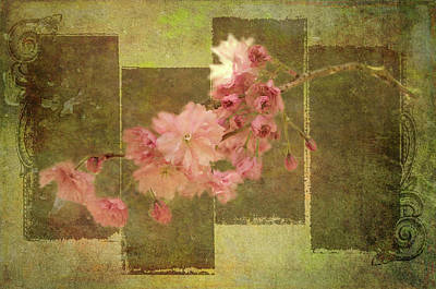 Digital Art - Romantic Blossoms by Marilyn Wilson