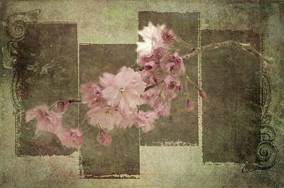 Photograph - Romantic Blossoms 6 by Marilyn Wilson