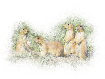 Photograph - Prairie Dog Family by Patti Deters