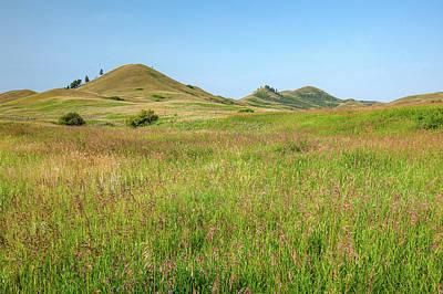 Photograph - Prairie Grass by Todd Klassy