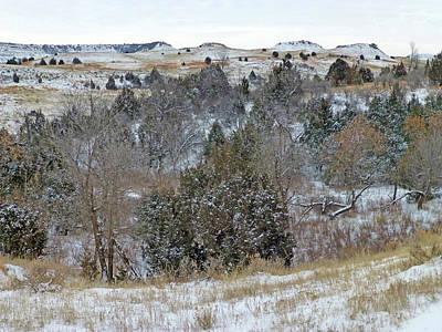Photograph - Prairie Tree Reverie by Cris Fulton