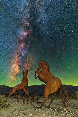 Photograph - Prancing Horses  by Ralf Rohner
