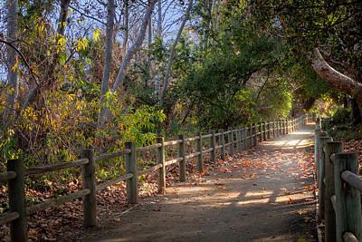 Photograph - Pretty Path by Alison Frank
