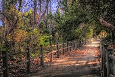 Photograph - Pretty Path Dreamy Feel by Alison Frank