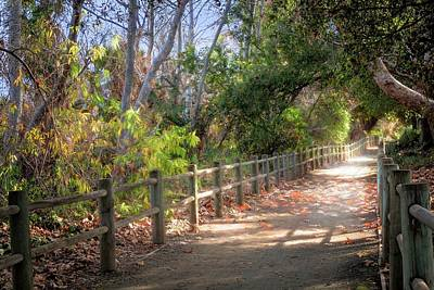 Photograph - Pretty Path II by Alison Frank