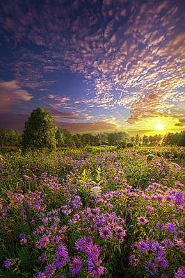 Photograph - Promising A New Day by Phil Koch