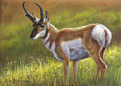 Painting - Pronghorn by Kim Lockman