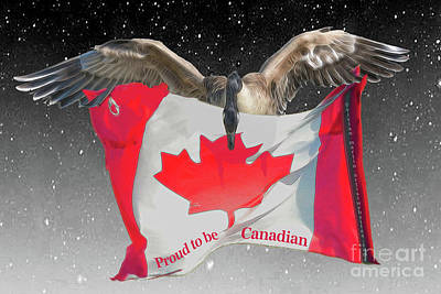 Proud To Be Canadian Art Print