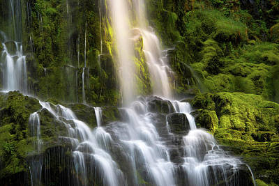 Photograph - Proxy Falls In Forest Light by Leland D Howard