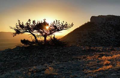 Photograph - Pryor Mountain Sunrise by Leland D Howard