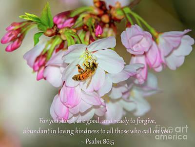State Love Nancy Ingersoll - Psalm 86-5 by Glenn Franco Simmons