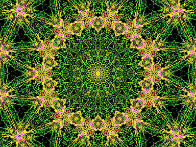 Digital Art - Psychedelic Kaleidoscope Abstract Pattern 8 by Artist Dot