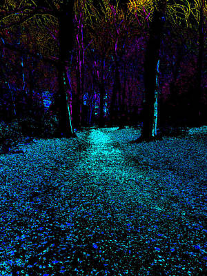 Photograph - Psychedelic Night Forest Trees In Highgate Woods 531 by Artist Dot