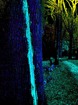 Photograph - Psychedelic Night Forest Trees In Highgate Woods 551 by Artist Dot