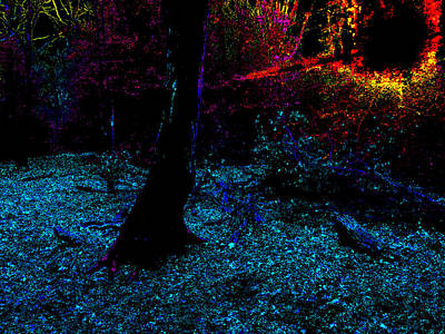 Photograph - Psychedelic Night Forest Trees In Highgate Woods 591 by Artist Dot