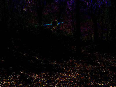 Photograph - Psychedelic Night Forest Trees In Highgate Woods 612 by Artist Dot