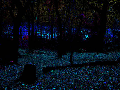 Photograph - Psychedelic Night Forest Trees In Highgate Woods 631 by Artist Dot