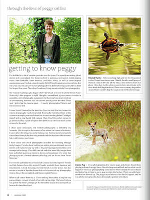 Photograph - Published In Zoom Magazine - Article In Summer 2012 Edition by Peggy Collins