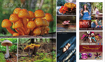 Photograph - Published In Zoom Magazine - Summer 2014 Edition by Peggy Collins