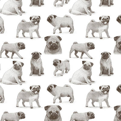 Drawing - Pug Pattern by Eric Fan