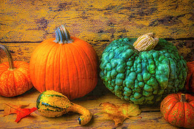 Photograph - Pumpkin Fall Autumn Still Life by Garry Gay
