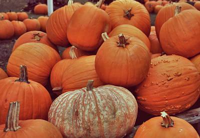 Photograph - Pumpkin Pile by JAMART Photography