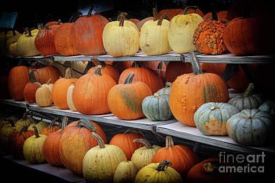 Photograph - Pumpkins For Sale by Karen Adams