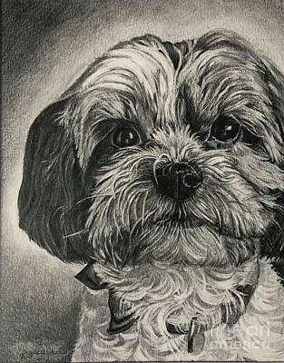 Drawing - Puppers by Angela Armano