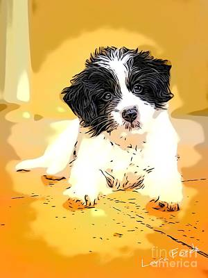 Digital Art - Puppy by Laura Forde