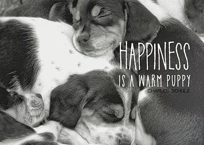 Photograph - Puppy Pile Quote by JAMART Photography