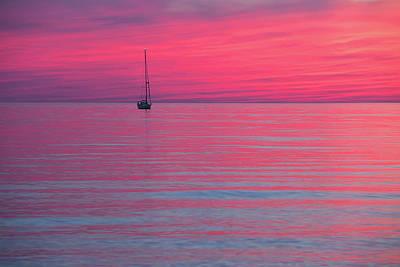 Photograph - Purple dusk by Davor Zerjav