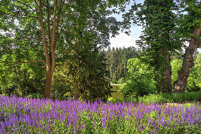 Photograph - Purple Flowering Border In Spring Park by Jenny Rainbow