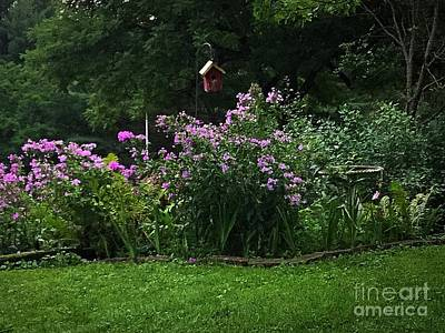 Photograph - Purple Flowers Spring Garden  by Frank J Casella