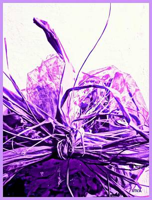Photograph - Purple Just For Maggie by VIVA Anderson