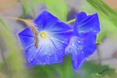 Digital Art - Purple Morning Glories In The Rain. by Rusty R Smith