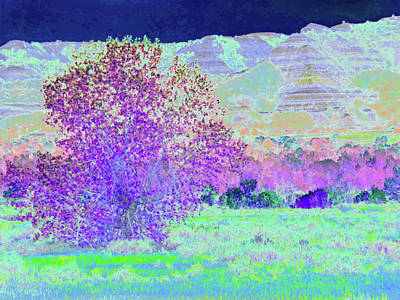 Photograph - Purple Tree Reverie by Cris Fulton