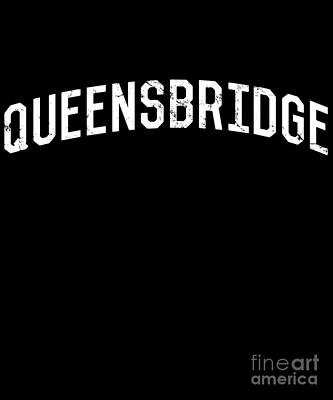 Digital Art - Queensbridge Ny by Flippin Sweet Gear